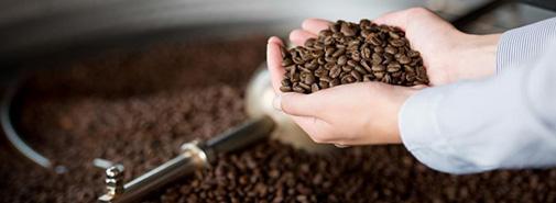 Káva z celého světa na týden provoní Brno