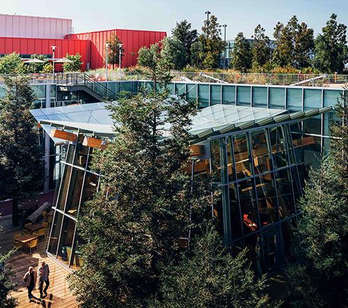 Facebook si postavil kanceláře s lesem na střeše podle návrhu Franka Gehryho