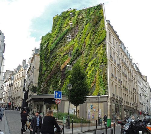 10 vertikálních zahrad, které přinášejí zeleň na nudné zdi