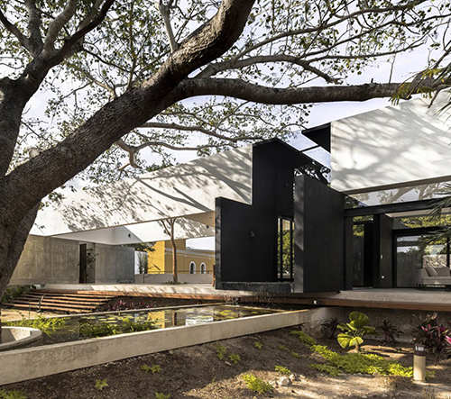 Studio AS Arquitectura navrhlo v Mexiku modernistickou vilu Casa Del Árbol
