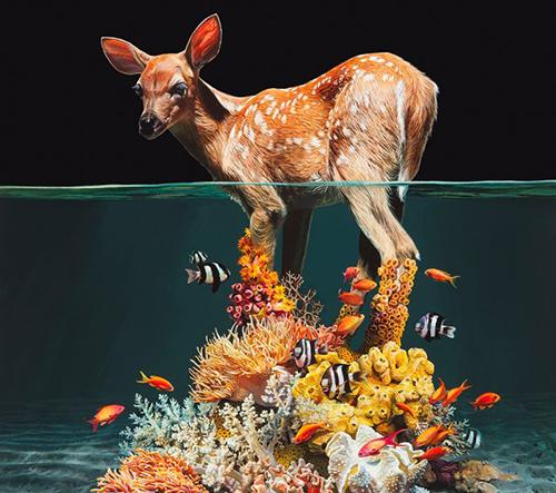 Lisa Ericson fotí surreální kompozice zvířat medzi dvěma světy