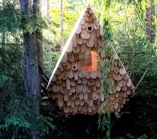 Chatka v kanadských lesích nabízí postel pro dva a budky pro 12 ptáků