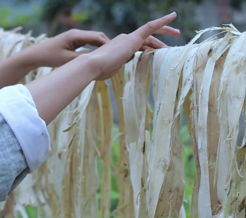 Video zobrazuje jak se ručně vyrábí papír