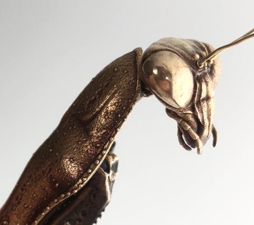Allan Drumond navrhl pro vědecké účely modely prehistorického hmyzu, teď slouží jako umělecké měděné sochy