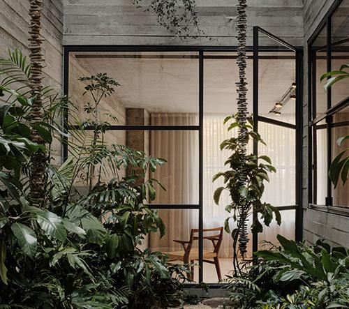 Studio Rick Joy navrhlo v Mexiku malou zelenou oázu zasazenou do betonové rezidence