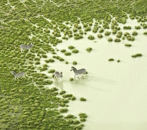 Zack Seckler fotí Botswanu z ptačí perspektivy