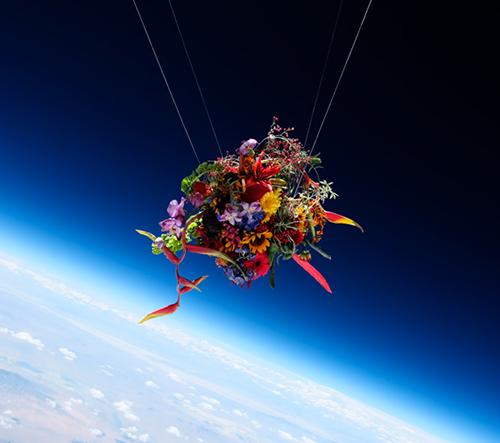Azuma Makoto vypouští květiny do stratosféry a dokumentuje jejich cestu