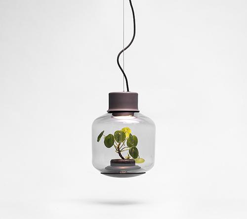 Nui Studio navrhlo samoudržitelný květináč